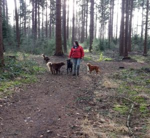 Esther laat honden uit in het bos